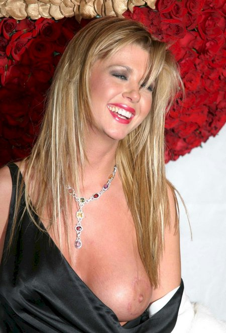 Best Hollywood Celebrity nip slips
